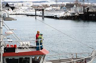 Bateaux de pêche. Arrivant au quai de Rimouski.