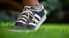 Splashed (MKSpots) Tags: adidas kiel color run