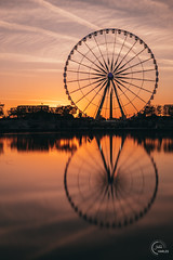 Reflection at the Tuileries (Julien CHARLES photography) Tags: eiffel eiffeltower europe ferriswheel france hdr paris tuileries concorde coucherdusoleil granderoue horse jardindestuileries orange placedelaconcorde reflection reflet roue sunset sunsetlight sunsettime yellow