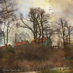 The green houses (Kerstin Frank art) Tags: nature trees buildings houses kerstinfrankart sky spring forest grass tree