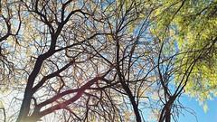 San Pedro de Atacama (Jaz JL) Tags: sanpedrodeatacama desiertodeatacama chile