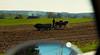 nikon f4s (bluebird87) Tags: nikon f4s dx0 c41 epson v600 film kodak ektar 35mm man horses amish farmer