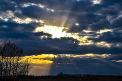 As the wind blows by the clouds a ray of sunshine appears (darletts56) Tags: sky clouds cloud sun sunshine ray rays tree trees prairie fields buildings poles pole light yellow golden white silhouette dusk evening roof top