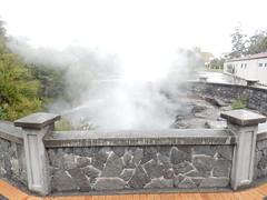 Seen in Rotorua (VJ Photos) Tags: hardison newzealand rotorua