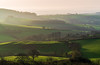 Dorset Haze (Anthony White) Tags: westdorsetdistrict england unitedkingdom gb anthonywhitesphotography hills light green mist andulating