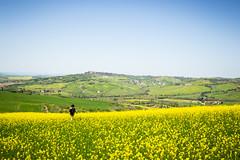 (NovaTHX) Tags: canon 6d landscape nature travel italia toscana italy tuscany dorcia europe sunset city light lights place colours sky clouds