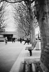 A walk in the park (DaniellaSevern) Tags: london londonstreets thethames theriverthames lifestylephotography peoplephotography filmphotography streetphotography blackandwhitefilm colourfilm filmcamera film olympusom10 olympus kodak kodakultramax ultramax400 bench peoplewatching people