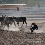 At Lethem's rodeo thumbnail