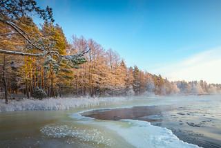 Beautiful winter day at Langinkoski