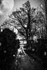 spec5 (Torrit   www.sevencolours.biz) Tags: spectre is haunting brighouse