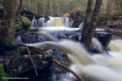 2-watermark-L (Brian M Hale) Tags: trout brook conservation area jefferson holden ma mass massachusetts newengland new england usa outside outdoors nature natural trees forest woods secluded stream river water fall waterfall spring brian hale brianhalephoto long exposure breakthrough filters photography