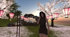 Let me take your ache away... (vixen.wottitz) Tags: secondlife hitou onsen home
