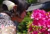 Beautiful Spring (runslikethewind83) Tags: japan woman lady beauty flower spring kimono portrait 女性 着物 春