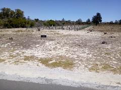 IMG-20180202-WA0009 (pastoralafrocali) Tags: africa sudáfrica