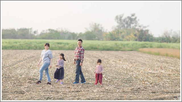 3月台南 親子寫真可以這樣拍 木棉花 蜀葵 小麥 一次讓你拍個夠 (63)