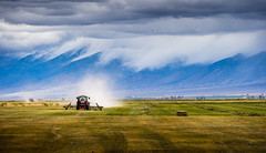 field day (andy_8357) Tags: field landscape machine beautiful dramatic clouds low harvest san luis valley southern colorado sel55210 55210mm f4563 oss sony a6000 6000 ilcenex mirrorless dust plough moffat crestone hay bail grass green golden tractor sangre de cristo e emount alpha ilce6000 mount