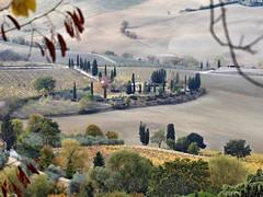 Toscane (Jolivillage) Tags: jolivillage landscape paesaggio toscane tuscany toscana italie italia italy europe europa montepulciano picturesque geotagged trees alberi arbres campagne campo