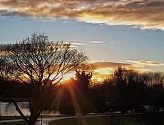 Beaming sun rays, through the trees!🌞😊🌞 (LeanneHall3 :-)) Tags: sunrays sunset sundaylights orange sun blue sky skyscape white clouds cloudsstormssunsetssunrises trees branches landscape eastpark hull kingstonuponhull samsung