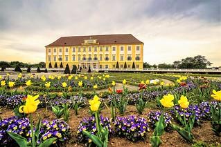 Schloss Hof Marchfeld Castle