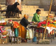 varanasi 2017 (gerben more) Tags: market india varanasi benares people goats woman man moustache fruit vegetables streetscene streetlife