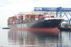 YM Ubiquity (jelpics) Tags: boat boston bostonharbor bostonma cargoship commercialship conleyterminal containership crane cranes harbor massachusetts massport merchantship ocean port sea ship vessel yangming ymubiquity
