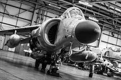 British Aerospace Sea Harrier FA2 - ZH801 (Ian Garfield - thanks for over 2 million views!) Tags: bae systems fa2 rnas zh801 aero aeroplane aerospace air airplane arm british canon fleet fly flying garfield harrier hawker siddeley ian navy night photo plane royal sea shoot station threshold thresholdaero wings yeovilton photography centre aviation