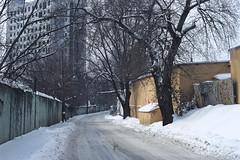 Road (dmitriy.marichev) Tags: fujichrome sensia 200 fujichromesensia200 chrome positive film fuji contax aria zeiss planar 50mm 5014 city street style winter snow cold contaxaria planar5014 carlzeissplanar50mmf14cymount dmitriymarichev kiev ukraine