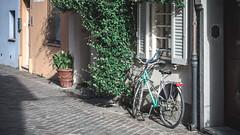 Street Photography - Rimini Italy (Federico.Michael.B) Tags: bike canon eos nikon street photo vintage 750d city casual art