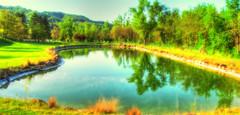 * One of the lake at the Golf Club * (argia world 1) Tags: laghetto pond golfclubmolinodelpero bibulano bologna collina hill alberi trees erba grass riflessi reflections paesaggio landscape