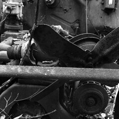 Engine Fan of an Old, Decaying Plymouth (pmvarsa) Tags: spring 2018 analog bw blackandwhite film 120 mf 6x6 mediumformat ilford ilfordfp4plus fp4 125iso nikonsupercoolscan9000ed nikon coolscan cans2s mamiya c33 mamiyac33 classic camera tlr twinlensreflex mood rust car chrysler plymouth decay abandoned derelict auto engine fan inline6 inlinesix inline trees leaves forest woods trail moraine art waterloo ontario canada