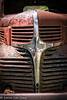 Old Dodge 1 (lorinleecary) Tags: harmony chrome grill hood oldtruck red rust truck