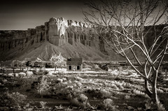 Torrey, Utah (EdBob) Tags: torrey utah southwest landscape abandoned house butte ranch bw blackwhite blackandwhite sepia outdoors western west 2018 april dry desert fence tree monochrome monochromatic edmundlowephotography edmundlowe usa america allmyphotographsare©copyrightedandallrightsreservednoneofthesephotosmaybereproducedandorusedinanyformofpublicationprintortheinternetwithoutmywrittenpermission capitolreef corral wwwedmundlowephotocom