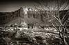 Torrey, Utah (EdBob) Tags: torrey utah southwest landscape abandoned house butte ranch bw blackwhite blackandwhite sepia outdoors western west 2018 april dry desert fence tree monochrome monochromatic edmundlowephotography edmundlowe usa america allmyphotographsare©copyrightedandallrightsreservednoneofthesephotosmaybereproducedandorusedinanyformofpublicationprintortheinternetwithoutmywrittenpermission capitolreef corral