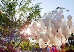Balloons dancing in the sun. (thnewblack) Tags: lg v30 android smartphone disneyland california balloons hdr sunglare bright 16mp f16 snapseed aicam
