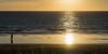 la belleza del rastro de un anciano (rey perezoso) Tags: 2017 mar atlantic ocean playa beach sunset sun contraluz backlight reflections sand man alone horizon ship water andalucía eu españa europa costadelaluz
