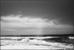 Ostende (mavricich) Tags: película pinamar playa paisaje parque planta argentina agua árbol monocromo monocromático kodak ricoh rangefinder viaje vista vacaciones cielo blanco nubes nublado naturaleza exterior 35mm tarde turista telémetro yo buenosaires original océano analógico street film latinoamérica calle stret sstreet