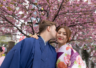 Young couple in kimono kissing under cherry tree