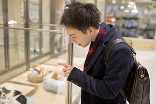 Young man looking at dog in pet shop