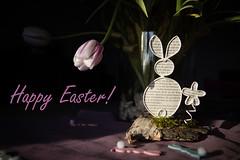 Happy Easter! (MR@tter) Tags: happyeaster decoration dekoration tulip tulpe sigma1770