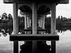 Under Reflection (Alfredo Esing) Tags: reflection water bridge mirror underside tambo river tamboriver victoria roadtrip blackwhite bw olympus omd em5ii 1250