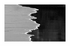 """""""A La Limite... Et Pas Que..."""" (The Blue Water Lily's Company) Tags: fdrouet nb bw monochrome monochrom eau water sable sand plage beach nikon d90"""