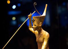 King Tut the hunter (Foto-Mike) Tags: canon eos 5d markiii 3 dslr 50mm 14 ef kingtut king tut californiasciencecenter losangeles exhibit ancient egypt artifact gold wood wooden statue cartoon africa museum