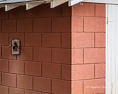 Pump House (augphoto) Tags: augphotoimagery building cementblock exterior structure texture wall newberry southcarolina unitedstates