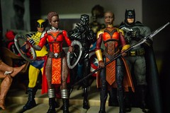 1211-115 There are Men Wearing Cowls with  Pointy Ears Behind Us. (misterperturbed) Tags: avengers batman batmanvsupermandawnofjustice blackpanther captainamerica dccomics deadpool hasbro jla justiceleague justiceleagueofamerica marvel marvellegends mezco mezcoone12collective one12collective wakanda wolverine xmen