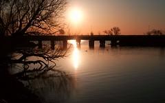 Sunrise, Monona Bay (humbletree) Tags: morninglight morningwalk madison mononabay sunrise fujixe2 7artisans25mmf18