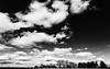 clouded (++sepp++) Tags: graben bayern deutschland de landschaft landscape landschaftsfotografie wolken wolkig clouds cloudy bw blackwhite monochrom sw schwarzweis einfarbig bavaria germany