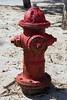 Rusty Buddy (- Burning Rubber -) Tags: usa fireplug hydrant firehydrant burningrubber florida fortlauderdale canoneos60d