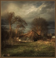 Before the rain. ( iPhoneX) (odinvadim) Tags: textured mytravelgram iphoneart iphone iphoneography iphoneonly rain forest evening obninsk painterlymobileart snapseed specialist textures travel frost artist editmaster landscape