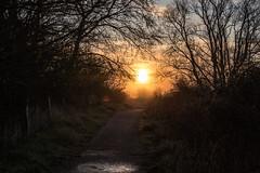 Path to Sun (@bill_11) Tags: pegwellbay unitedkingdom isleofthanet naturereserve england kent cliffsend gb