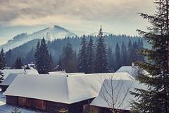 Snowy Rooftops (peterhorensky) Tags: zuberec winter zima slovakia village muzeumoravskejdediny snow